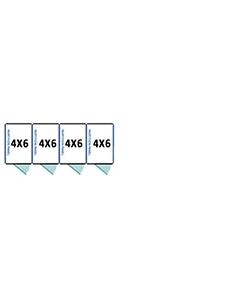 4' X 6' Multiple Standard Full Stall Dog Kennels x4