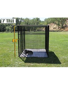 6' X 8' Complete 7' Tall Dog Kennel (Powder-Coated)
