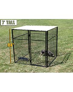 8' X 8' Complete 7' Tall Dog Kennel (Powder-Coated)