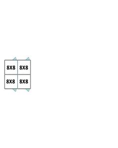 8' X 8' Multiple Vinyl Back To Back Dog Kennels x2