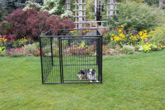 4' x 10' 4' Tall Welded Wire Kennel (Basic)