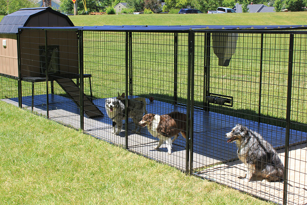 K9 Kennel Castle Directory