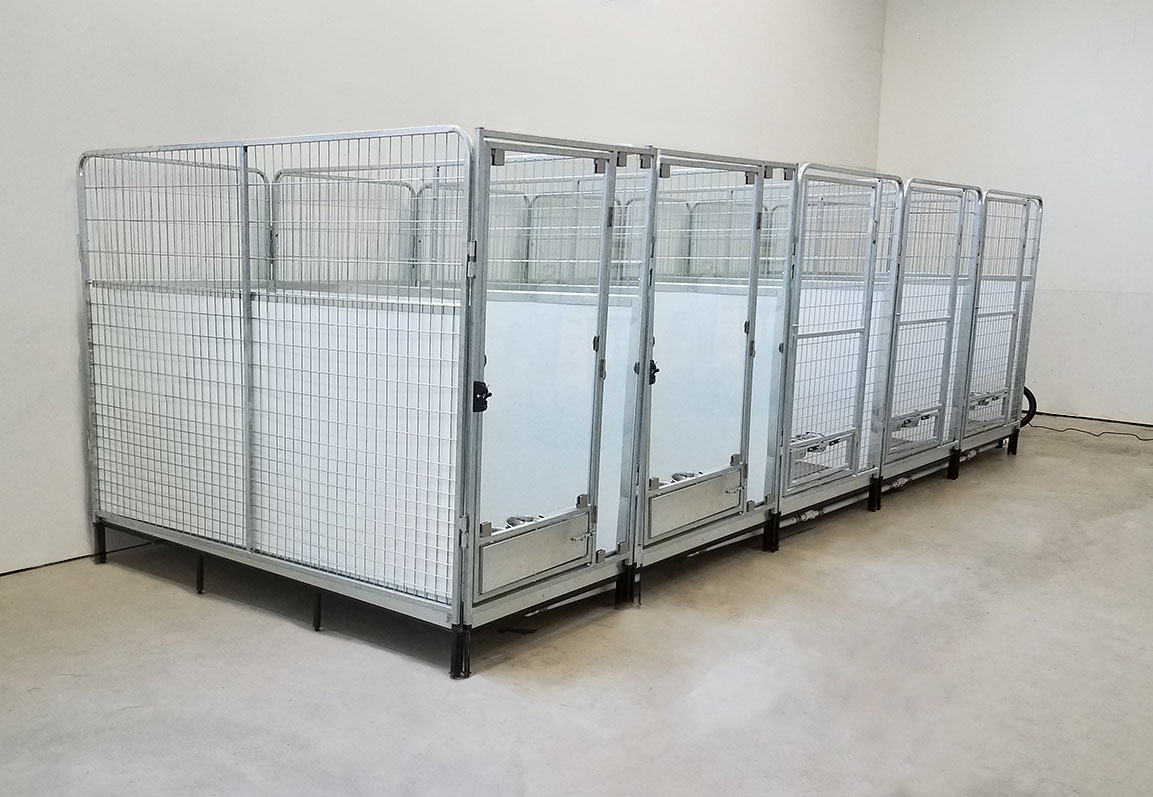 Quick Clean Kennel Multiple Kennels