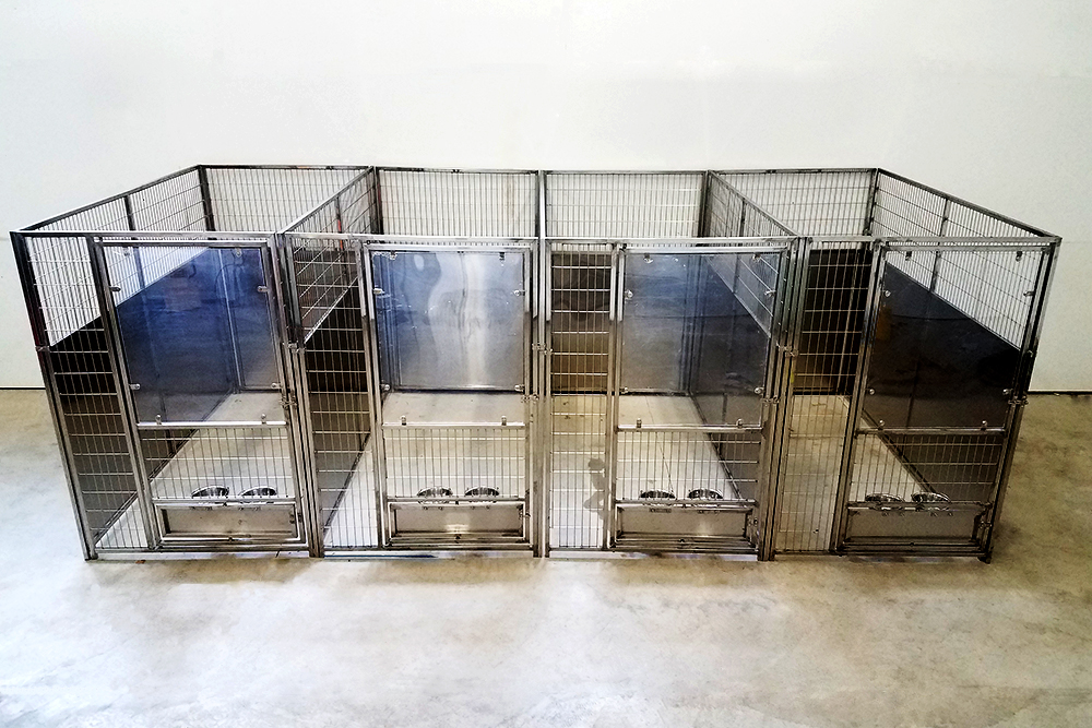 Stainless Steel Kennels Multiple Kennels