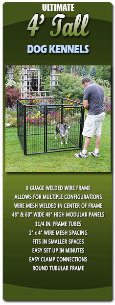 Ultimate 4 Tall Dog Kennels