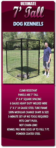 Ultimate 7 Tall Dog Kennels