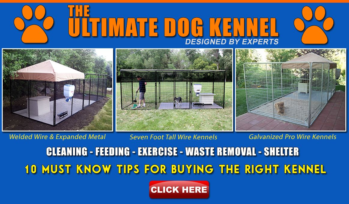 The Ultimate Dog Kennel