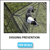Dog Kennel Dig Prevention