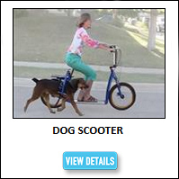 Dog Exercise Scooter